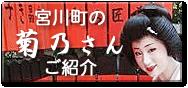 宮川町の菊乃さんのご紹介